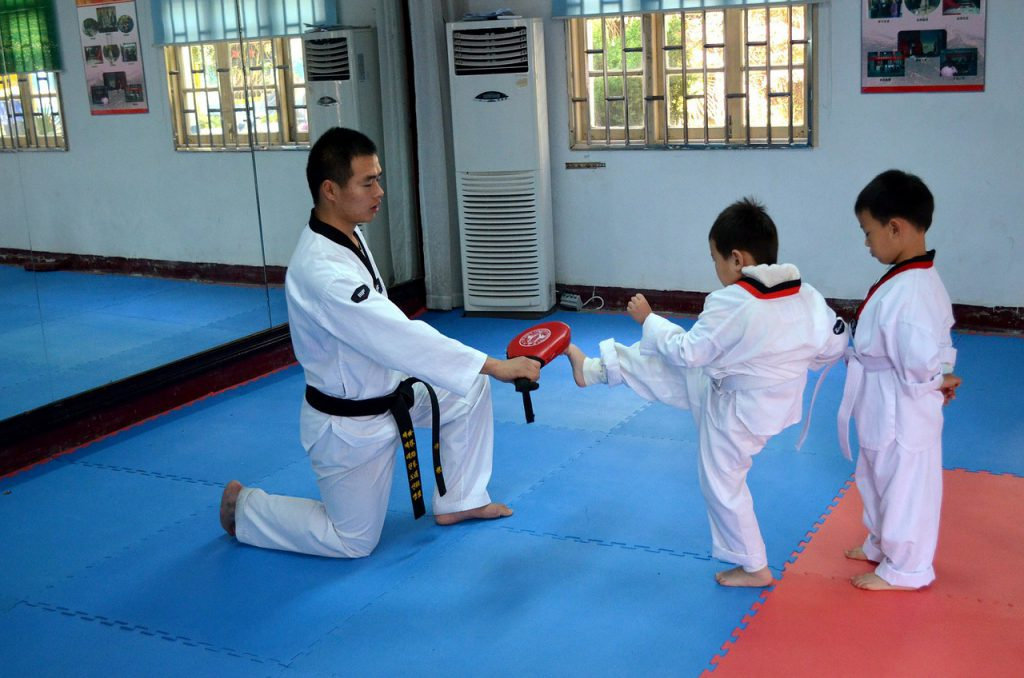 Five Best Martial Art Bloggers