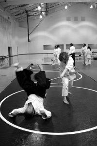 aikido-362952_1920
