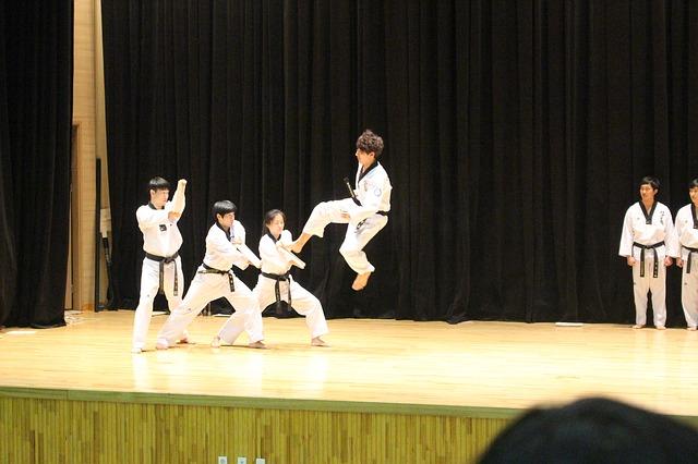 Taekwando Korea's Official National Martial Art